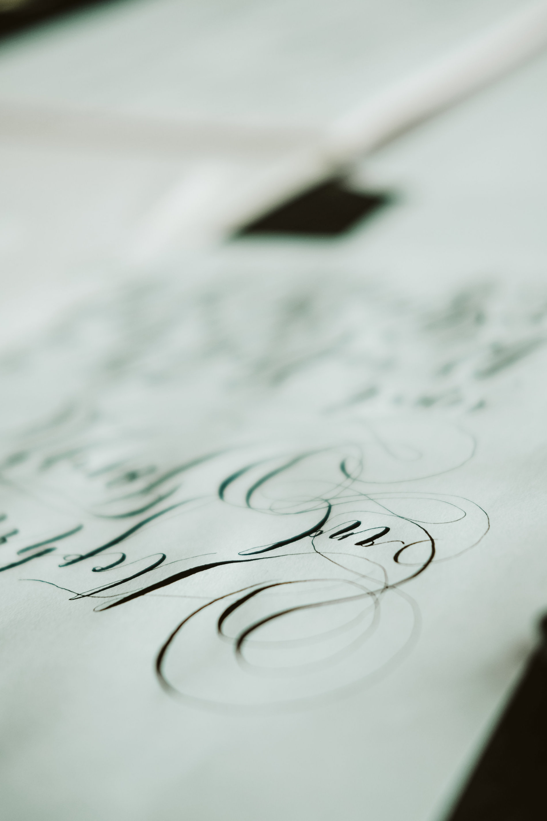 Invitation Glossary black calligraphy flourishes