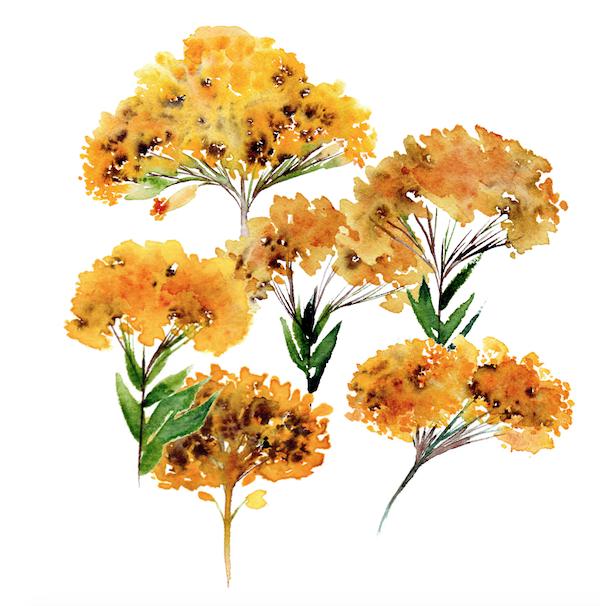 Bespoke watercolour wedding invitations deep yellow flowers