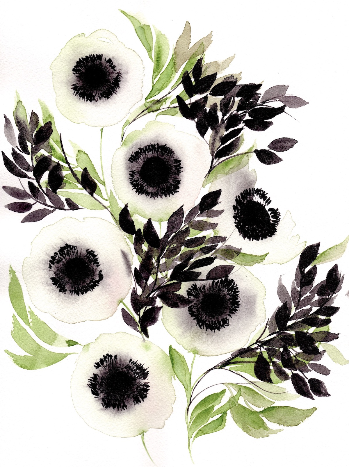 Abstract Floral illustrations with white anemones and black leaves