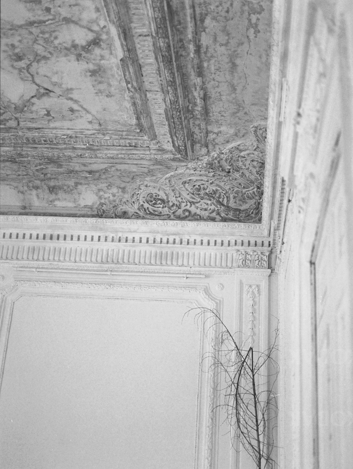 Fine Art Wedding Inspiration with ornate ceiling detail