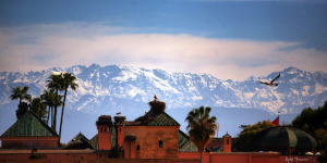 Luxury Wedding in Morocco Atlas Mountains
