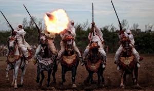Luxury Wedding in Morocco horses festival