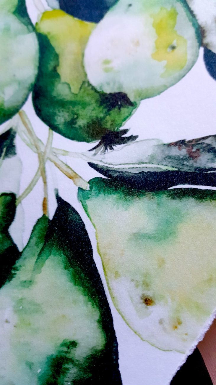 Hand Painted Wedding Invitations pears watercolour close up view