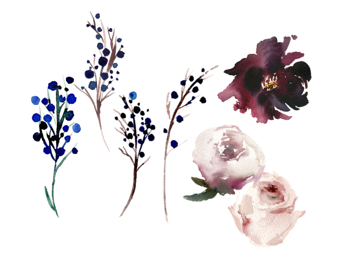Watercolour florals branches and flowers