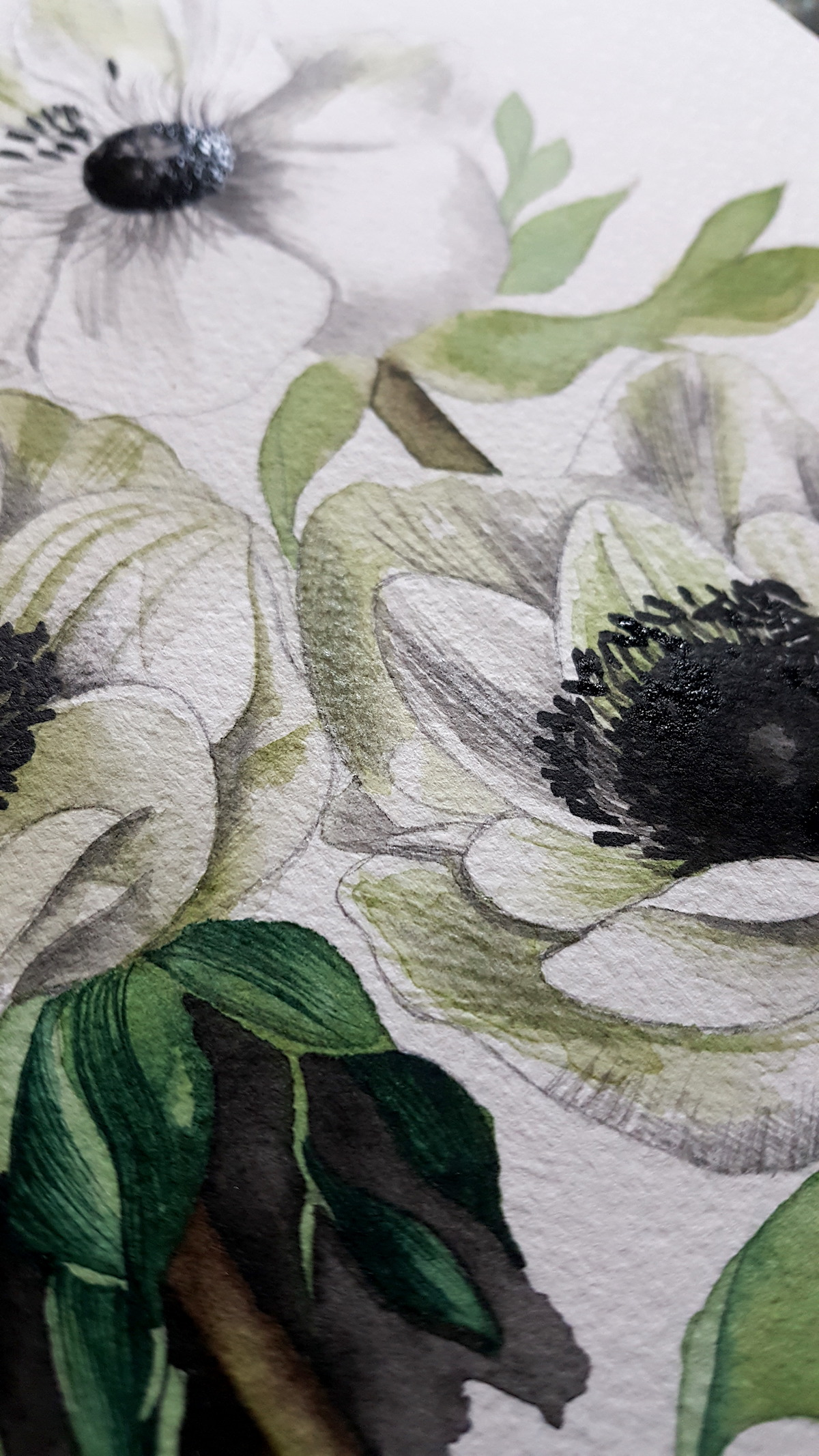 Working on the black detail of anemone flower's centre