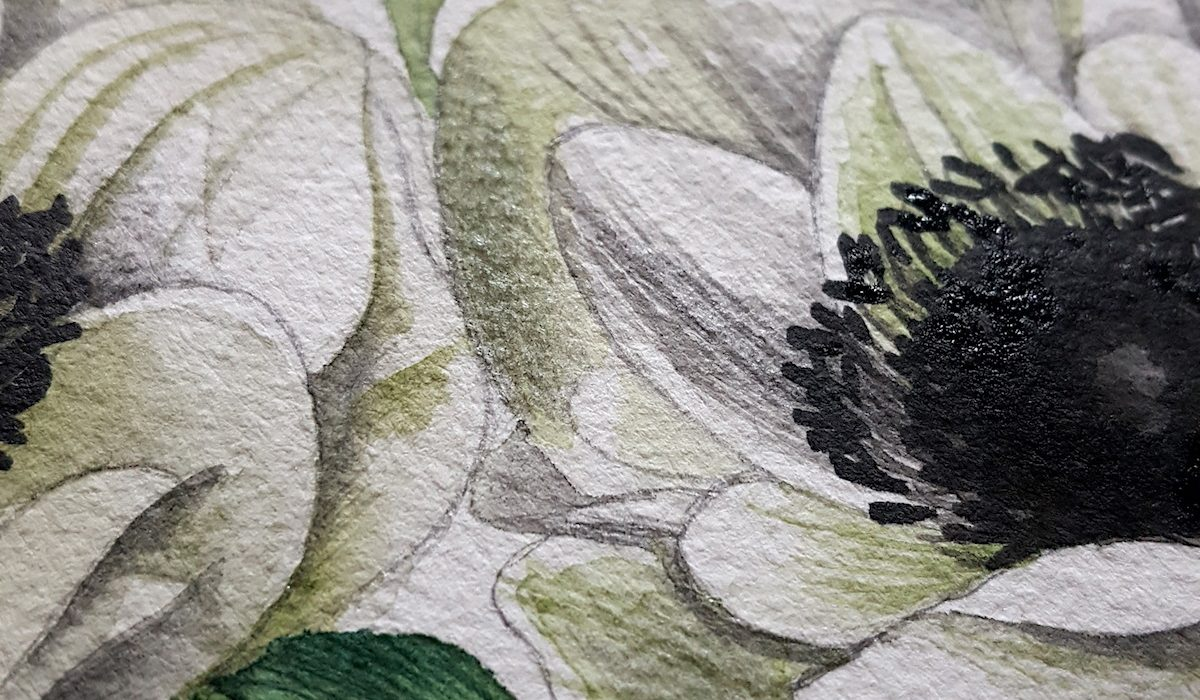 Watercolour Illustration - detail of anemone flower's centre