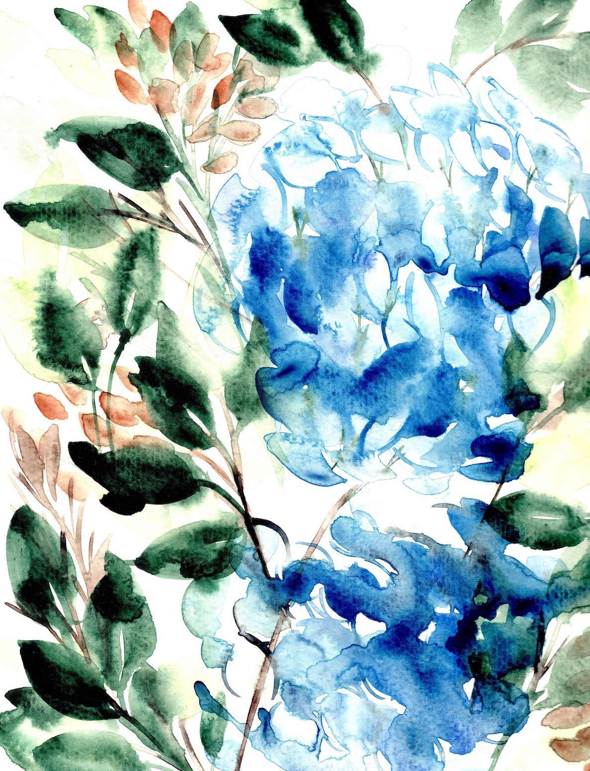 Abstract Floral Illustrations Blue hydrangea watercolour copy