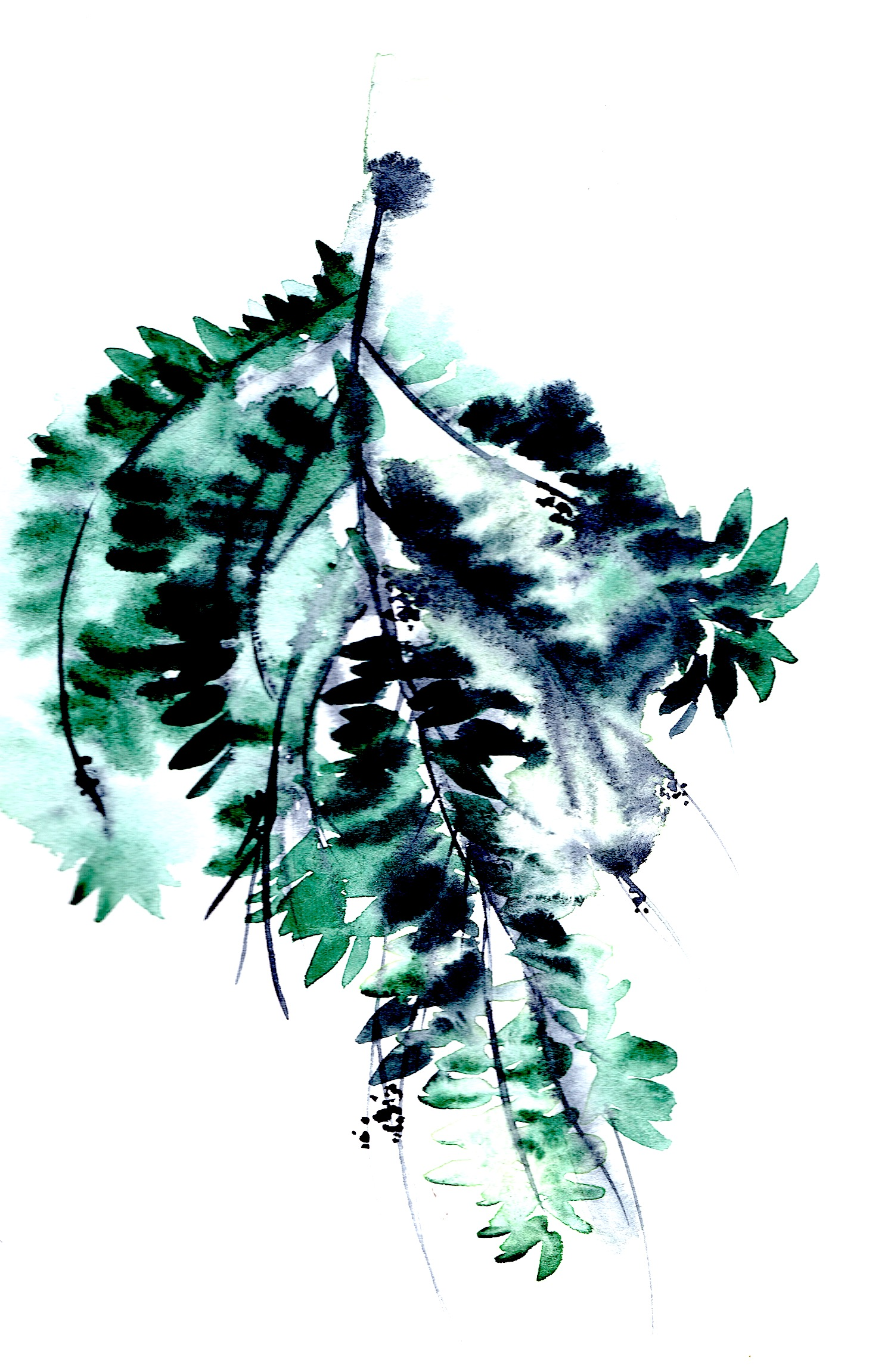 Green watercolour leaves