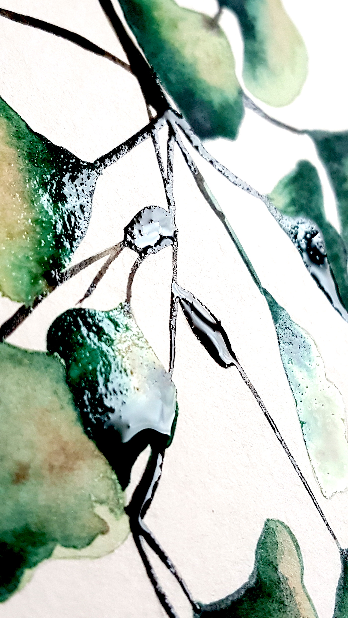 Green leaves showing wet watercolour paint