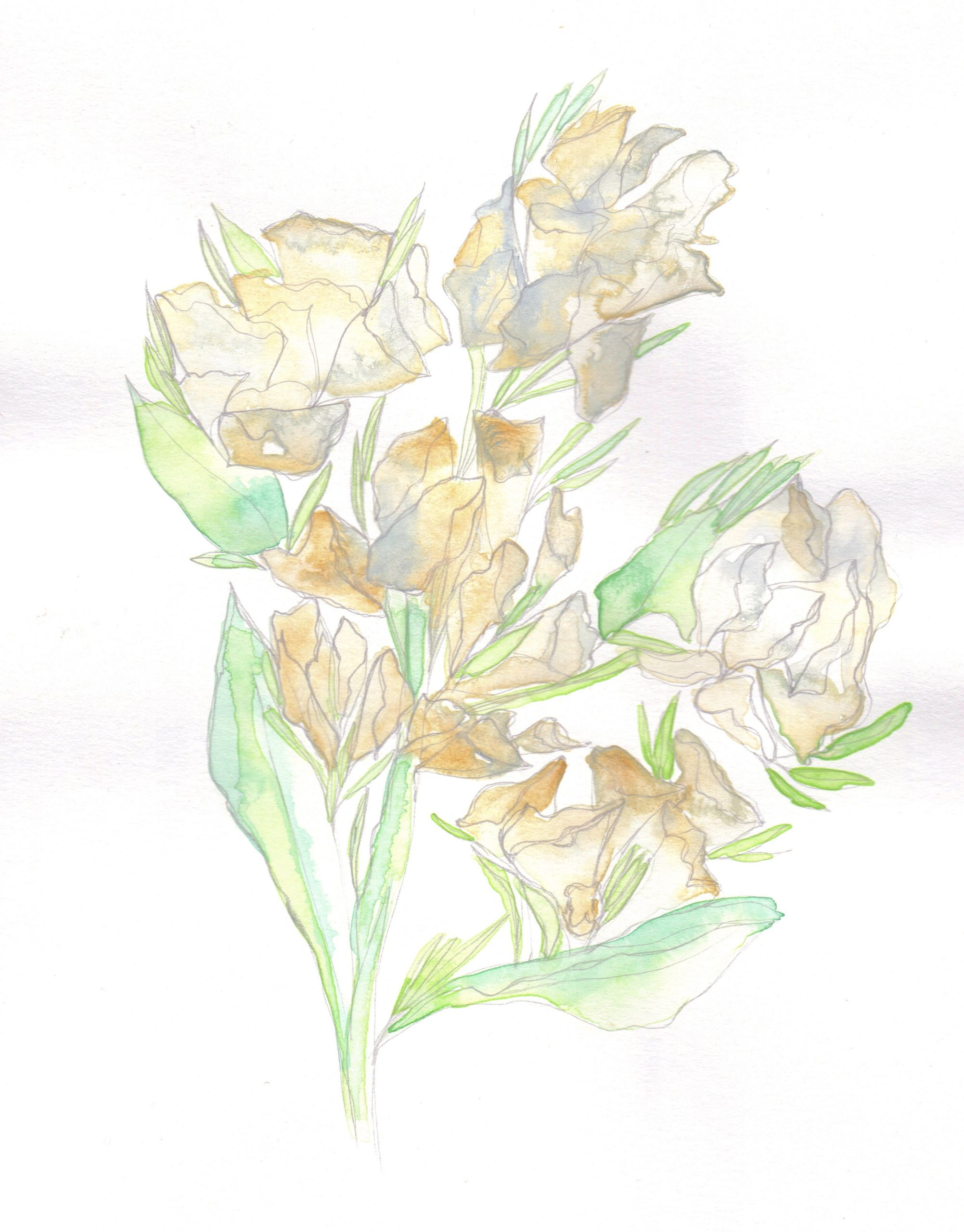 Yellow and green watercolour flowers