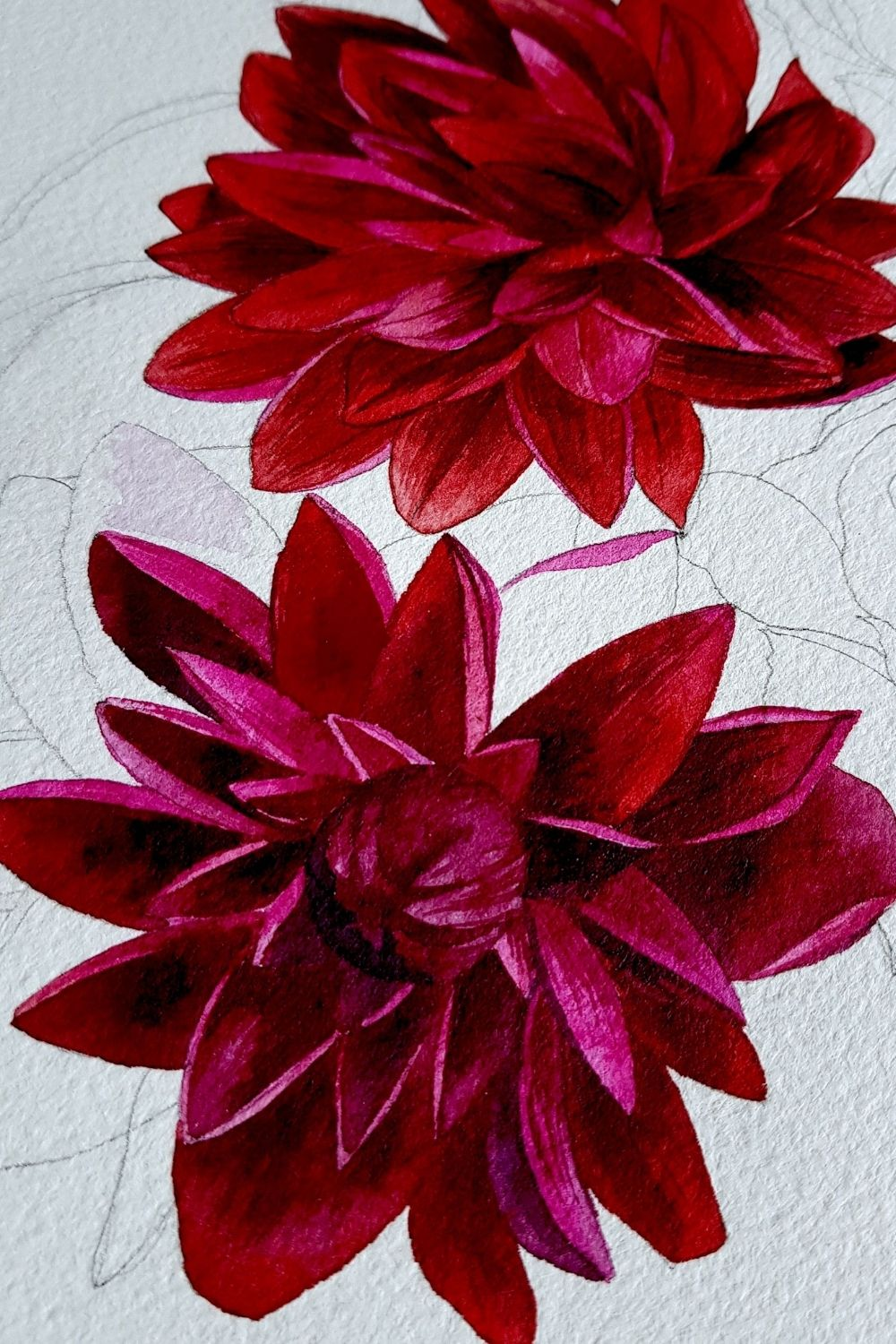 Red and deep burgundy red flower watercolour painting