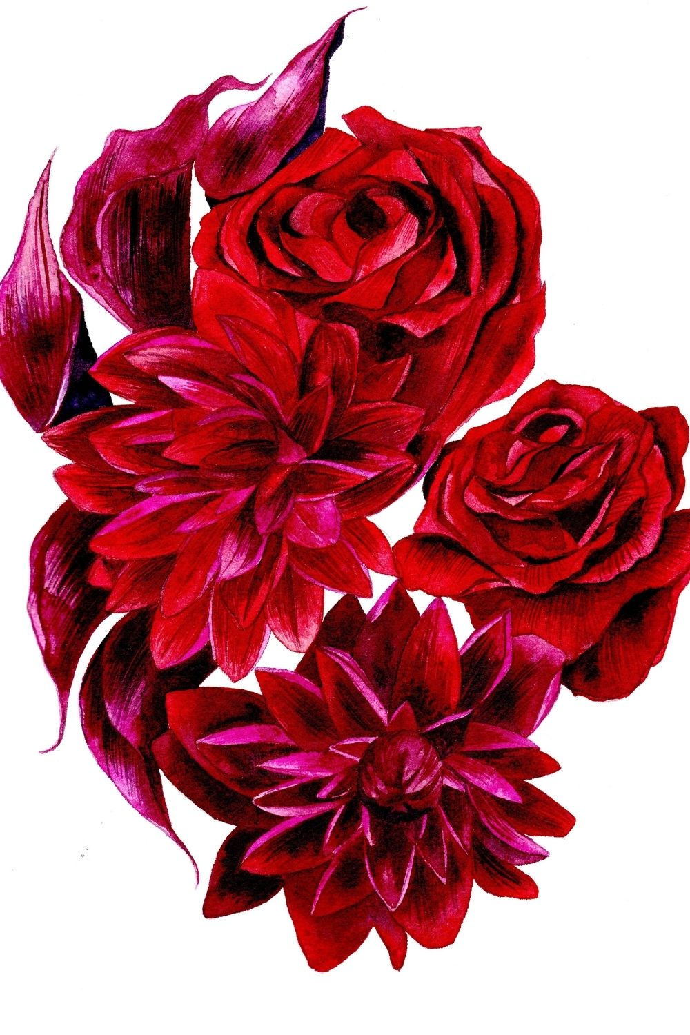 Deep red, crimson and magenta roses and dahlia watercolour painting illustration
